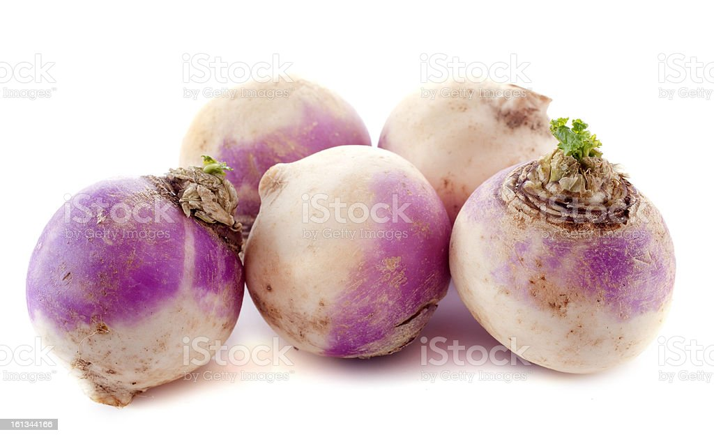 Freshly picked discolored turnips stock photo