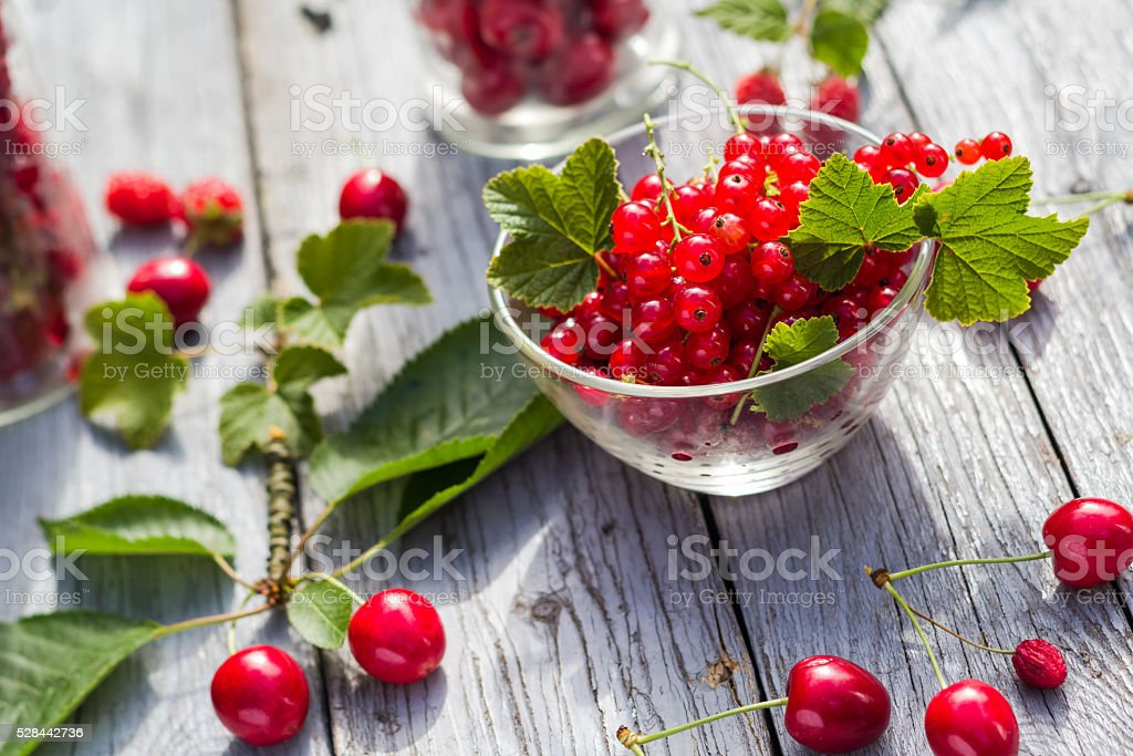 Freshly picked fruits currants cherries table stock photo