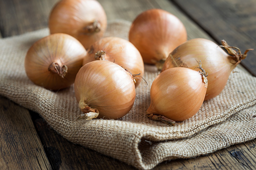 freshly picked onions