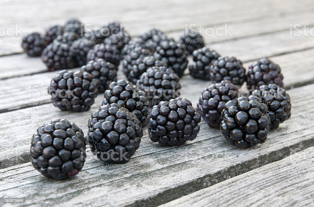 Freshly Picked Organic Blackberries - Grown in the Wild (XXXL) royalty-free stock photo