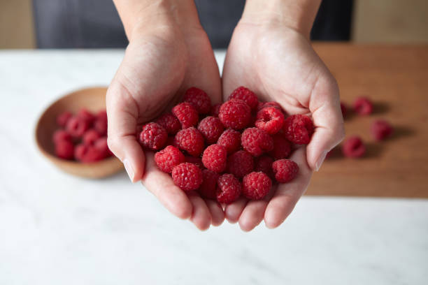 Freshly picked red raspberry for cooking homemade fruits pie. A woman prepares berries above white table. stock photo