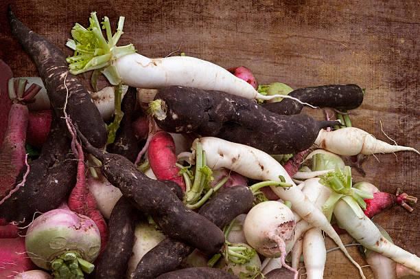 świeżo odebrane warzywa korzeniowe - warzywo korzeniowe zdjęcia i obrazy z banku zdjęć