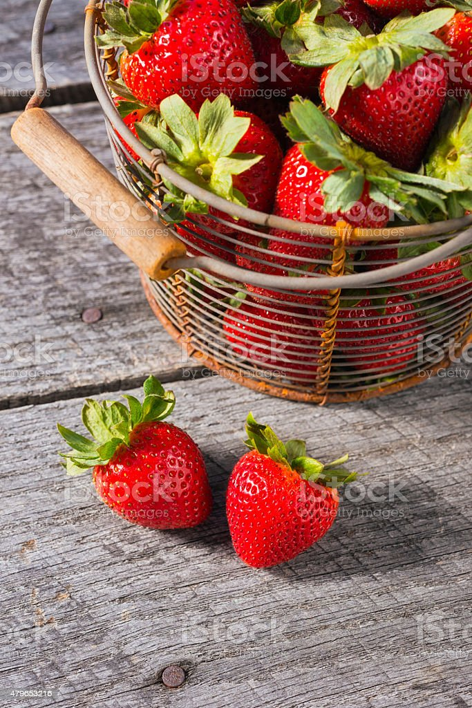 Freshly picked strawberries in a vintage wire basket stock photo