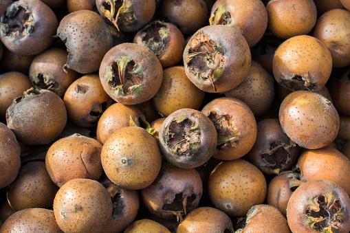 Vers Pakte Mispel Fruit Soorten Mespilus Germanica In Vak Stockfoto en meer beelden van Biologisch
