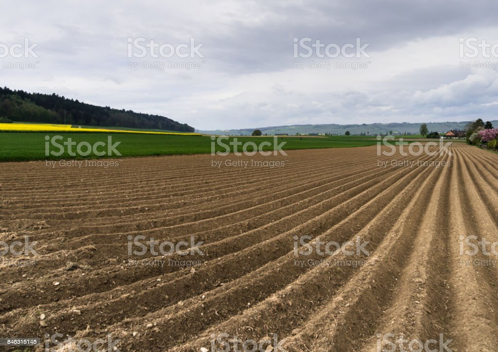 freshly plowed field stock photo
