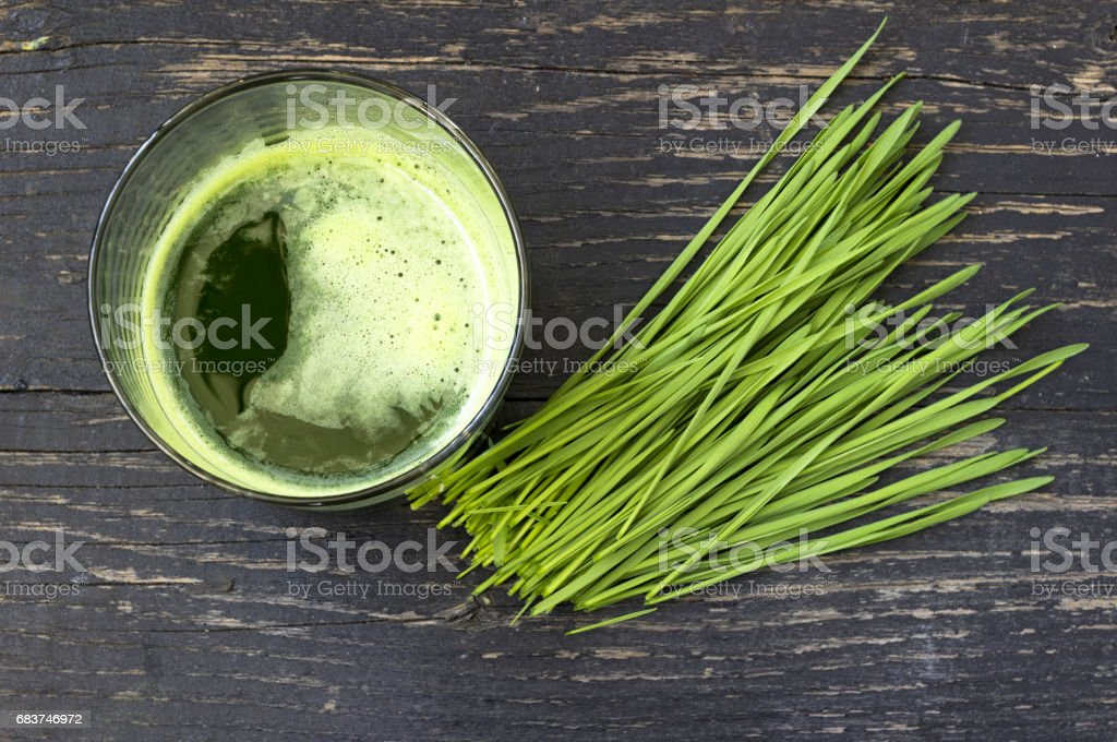 Freshly squeezed juice of wheat grass stock photo