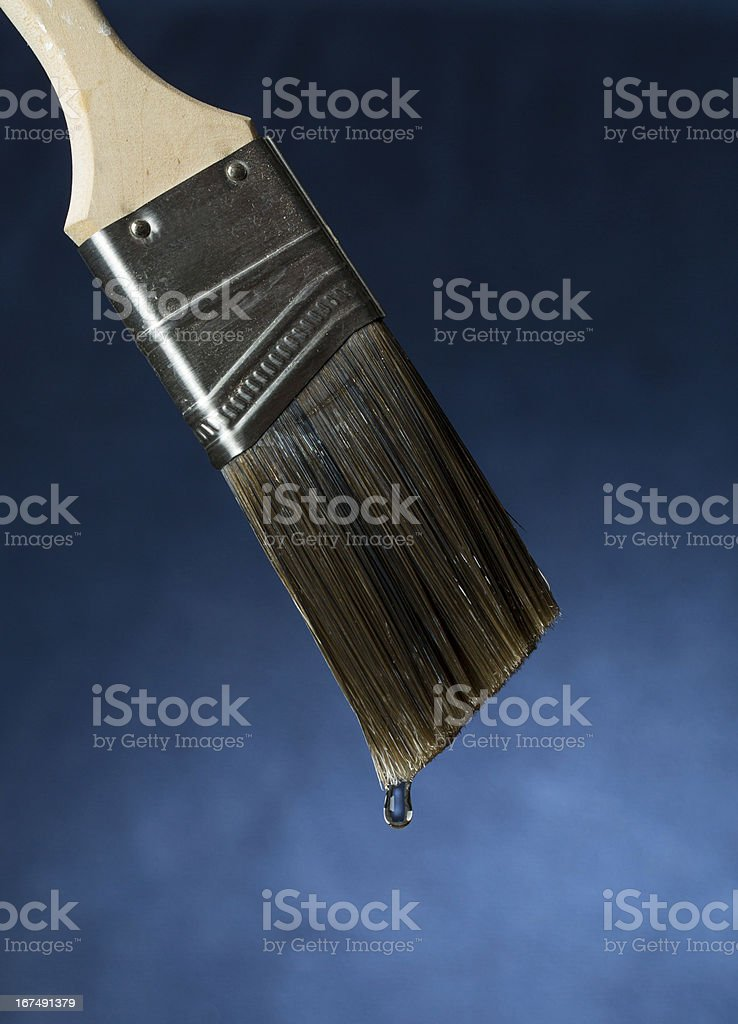 Freshly Washed Paint Brush royalty-free stock photo