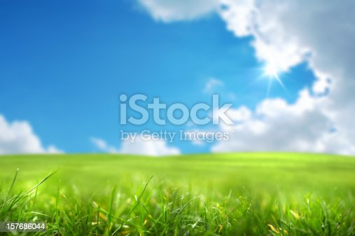 close up shot of green field over sky and shining sun.