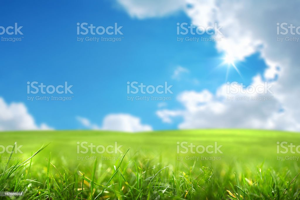 freshness stock photo