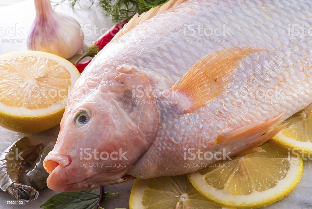 Freshness reddens the Nile Tilapia fish (Oreochromis niloticus) royalty-free stock photo