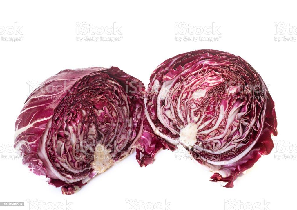 salade fraîcheur - Photo
