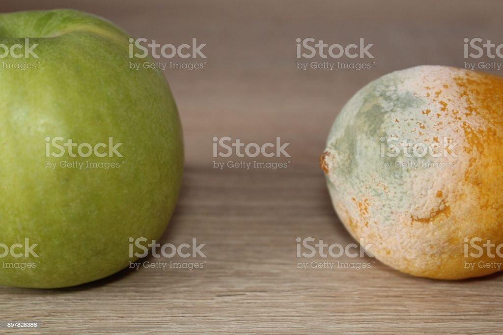 Freshness vs mold. stock photo