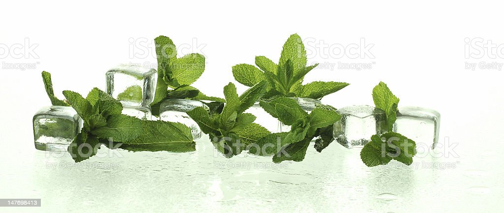 freshness with ice cubes and mint royalty-free stock photo