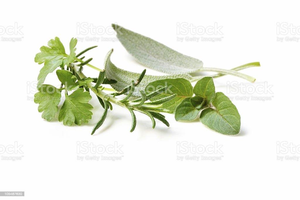 Fresh-picked Herbs royalty-free stock photo