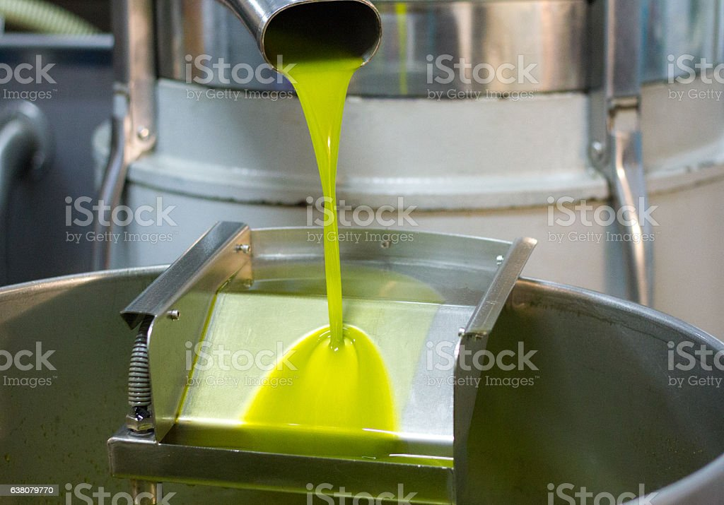 Fresh-Pressed Olive Oil Pouring From Olive Press Spout stock photo