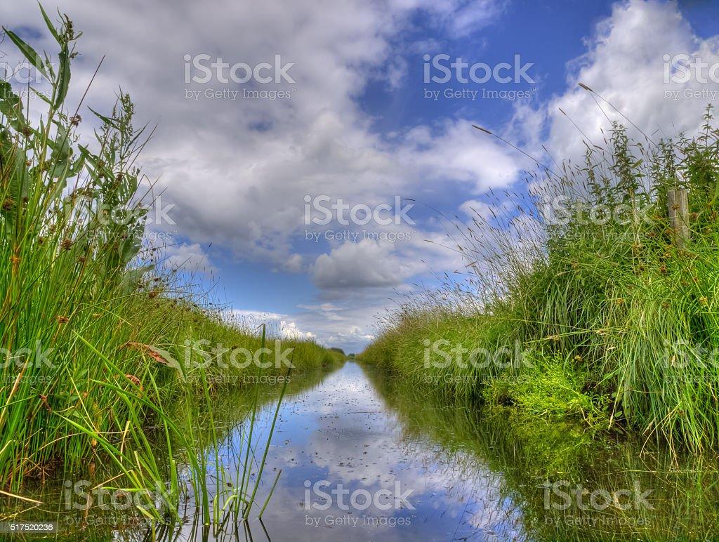 Freshwater ditch in dutch polder landscape stock photo