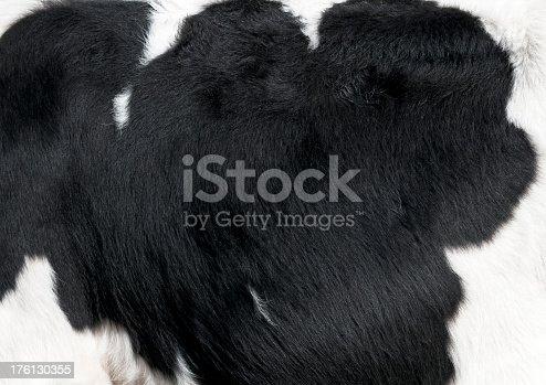 istock Fresian Cow Hide Pattern 176130355