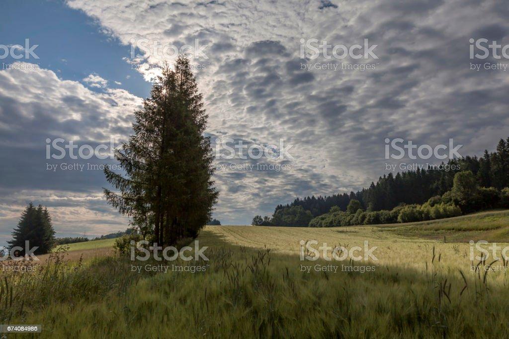 Frühling im Gailtal, Kaernten royalty-free stock photo