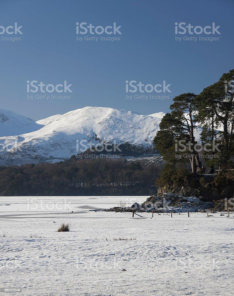 Friars Cragg Frozen Landscape royalty-free stock photo