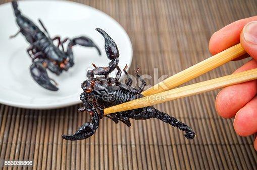 istock fried black scorpion 883038866