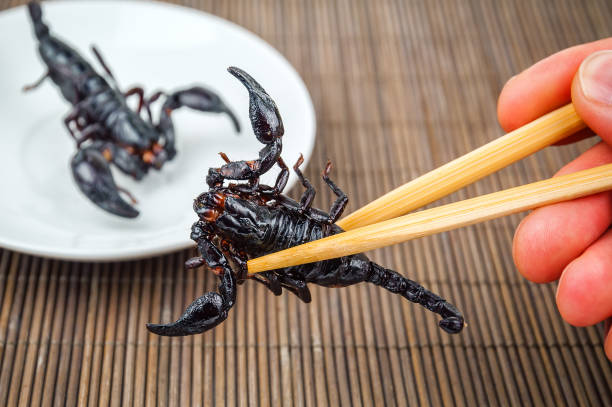 fried black scorpion - scorpion stock photos and pictures