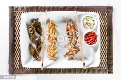 Fried Insects Being Served On A Plate. Other Fried Insect Shots: