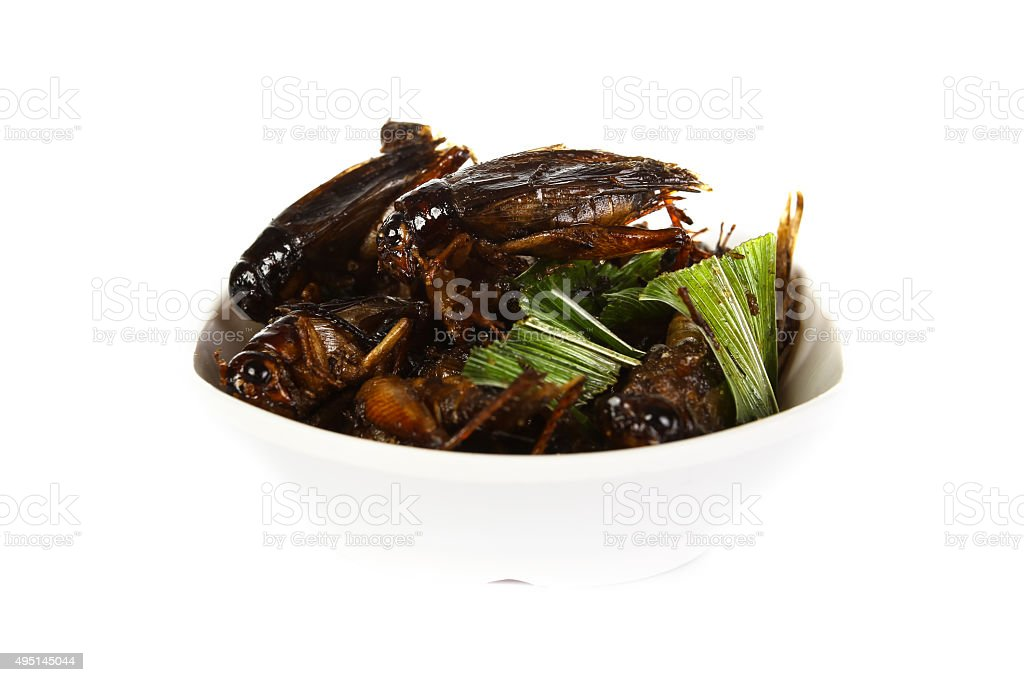 Fried crickets isolate on white stock photo
