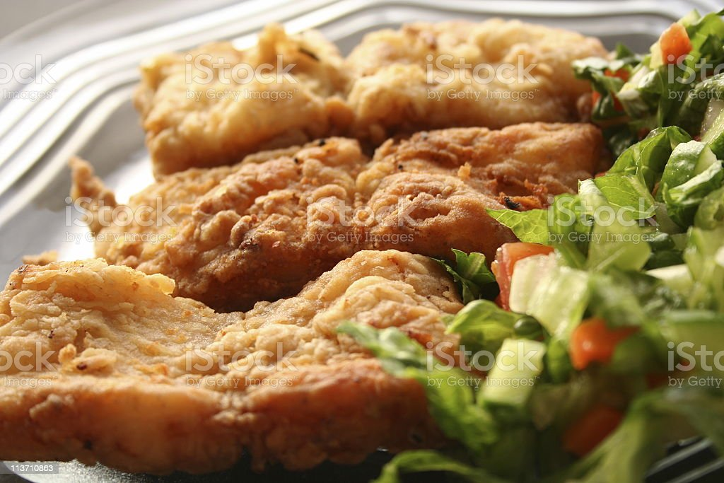 Fried fish fillet in dish with salad royalty-free stock photo