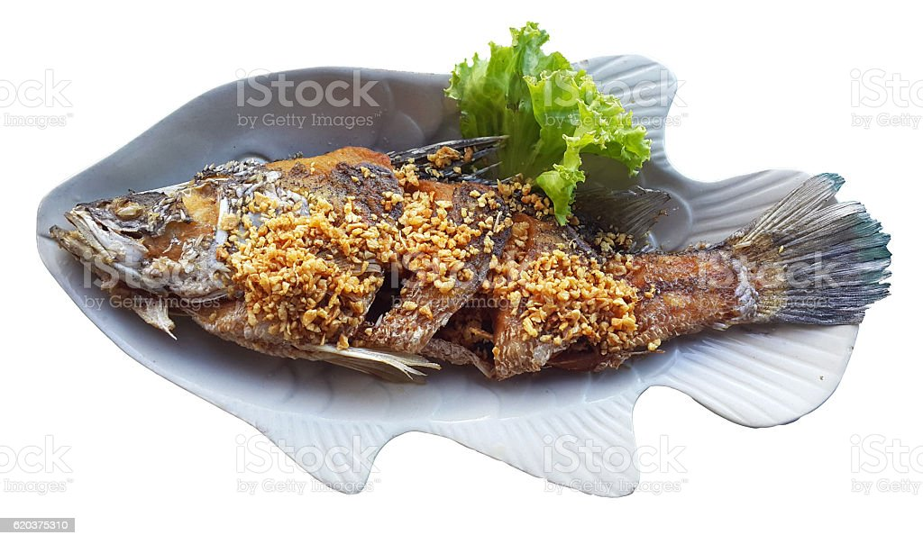 Fried fish on a plate, isolated on a white background zbiór zdjęć royalty-free