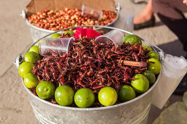 Gebratene Heuschrecken für Verkauf, Mexiko – Foto