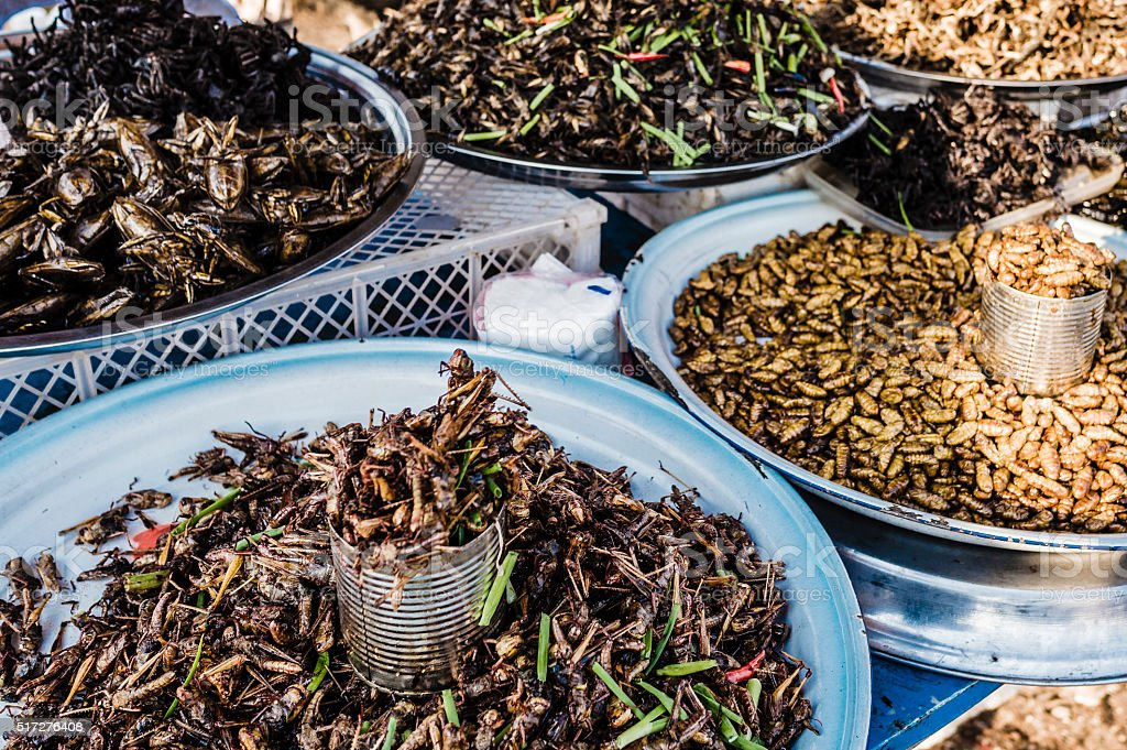 Fried insects for sale in street market Siem reap Cambodia stock photo