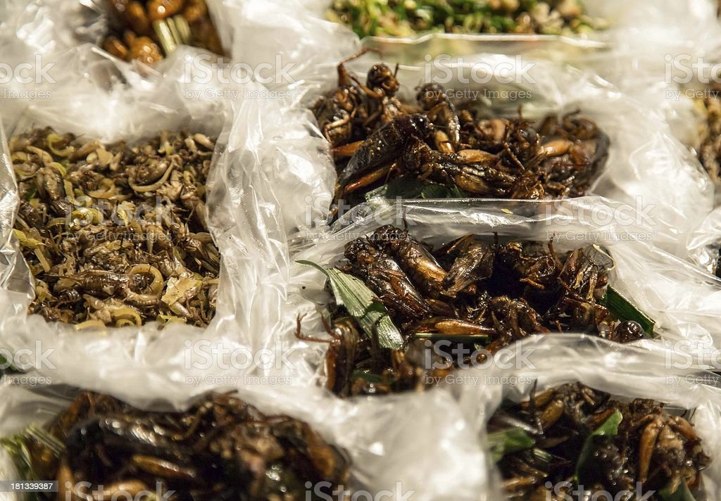 Fried insects in plastic bags stock photo
