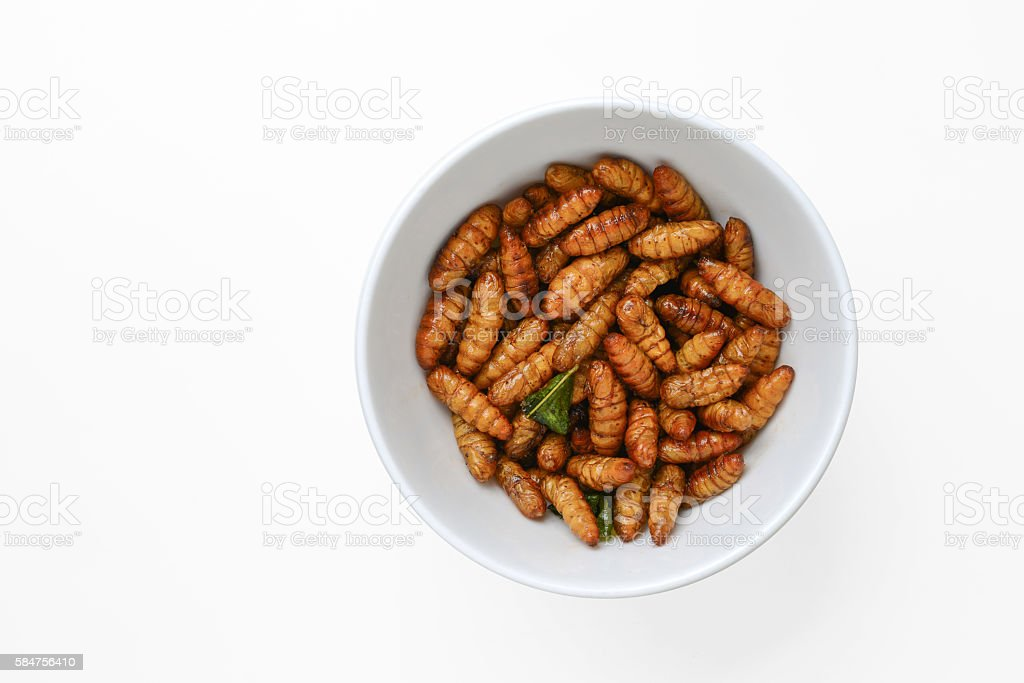Aliment frit insectes - Photo