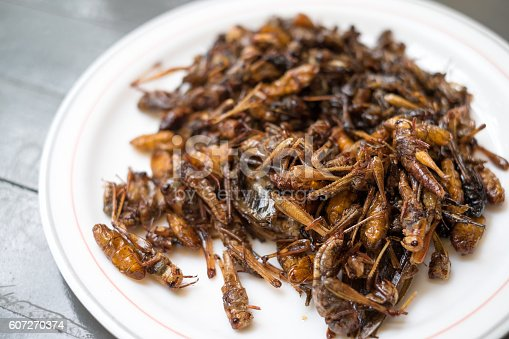 istock Fried insects 607270374