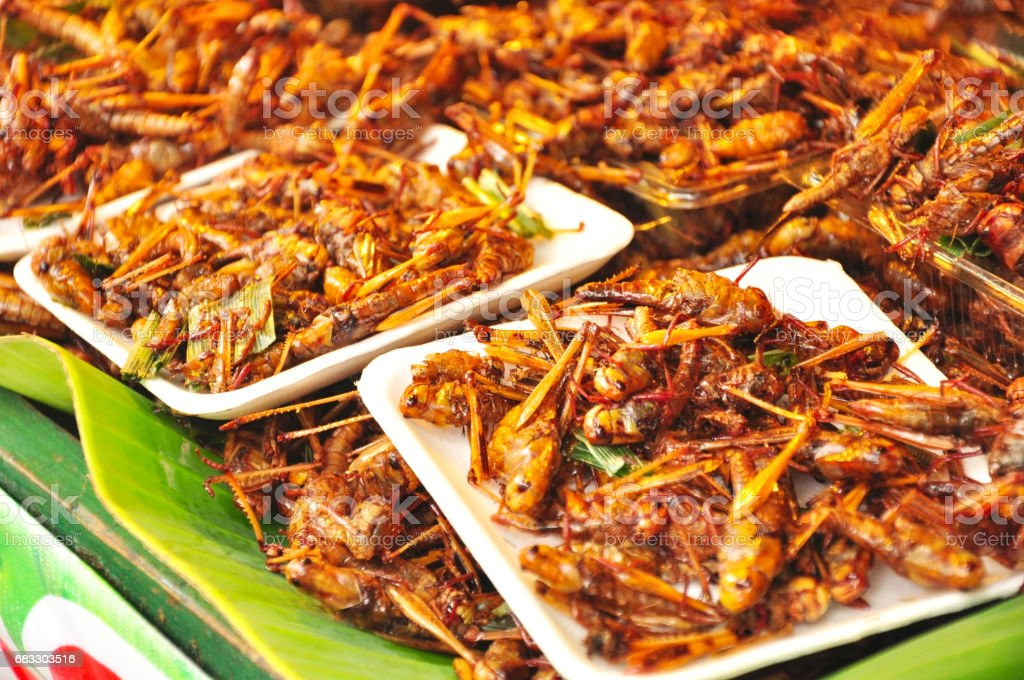 Fried insects sell in open market Thailand,insects foods zbiór zdjęć royalty-free