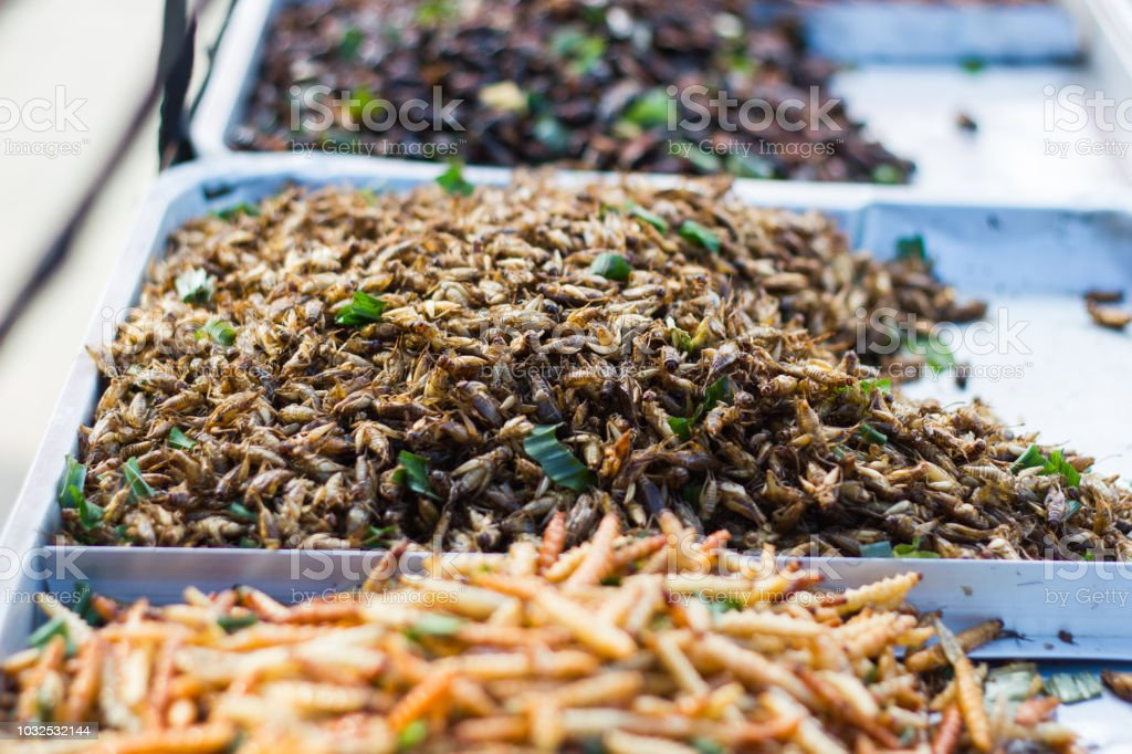Fried Insects Thai Food At The Street Food Market Stock Photo - Download  Image Now