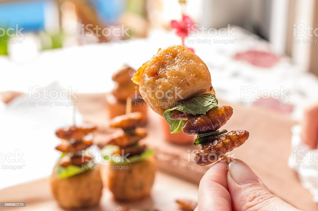 Fried insects - Wood worm insect crispy with chicken roll stock photo