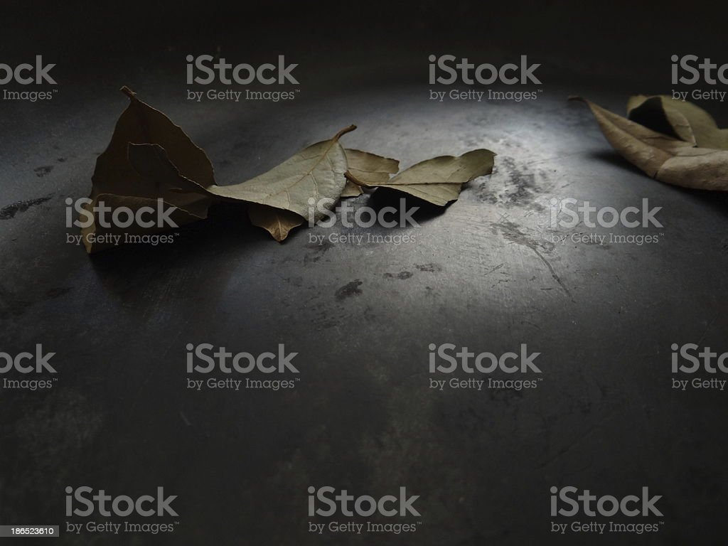 fried leaves royalty-free stock photo