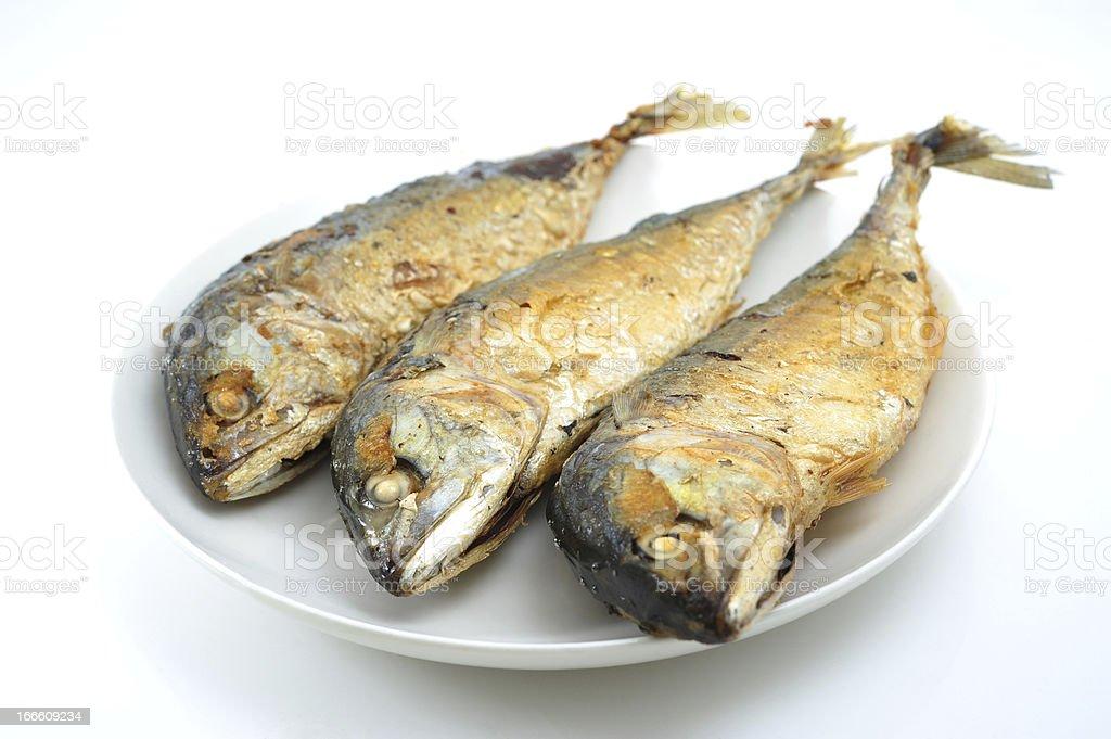 Fried Mackerel stock photo
