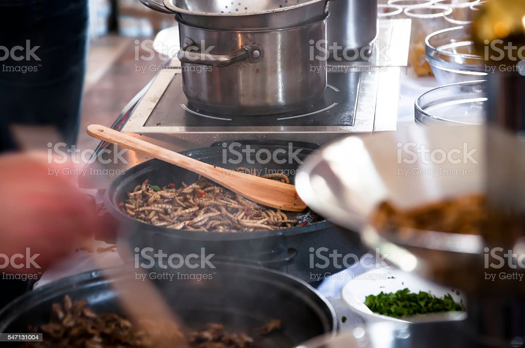 fried mealworms on the pan stock photo