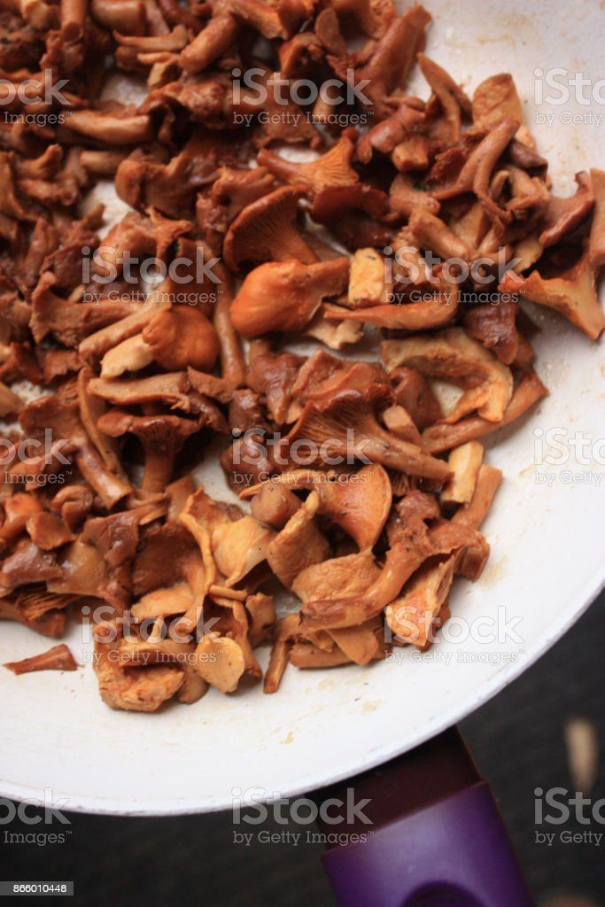 Fried mushrooms from the forest stock photo