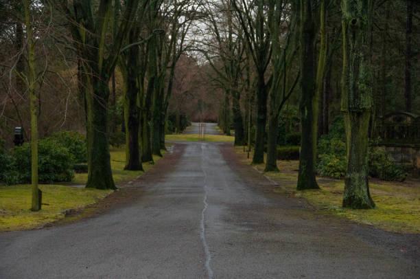 Friedhofsallee – Foto