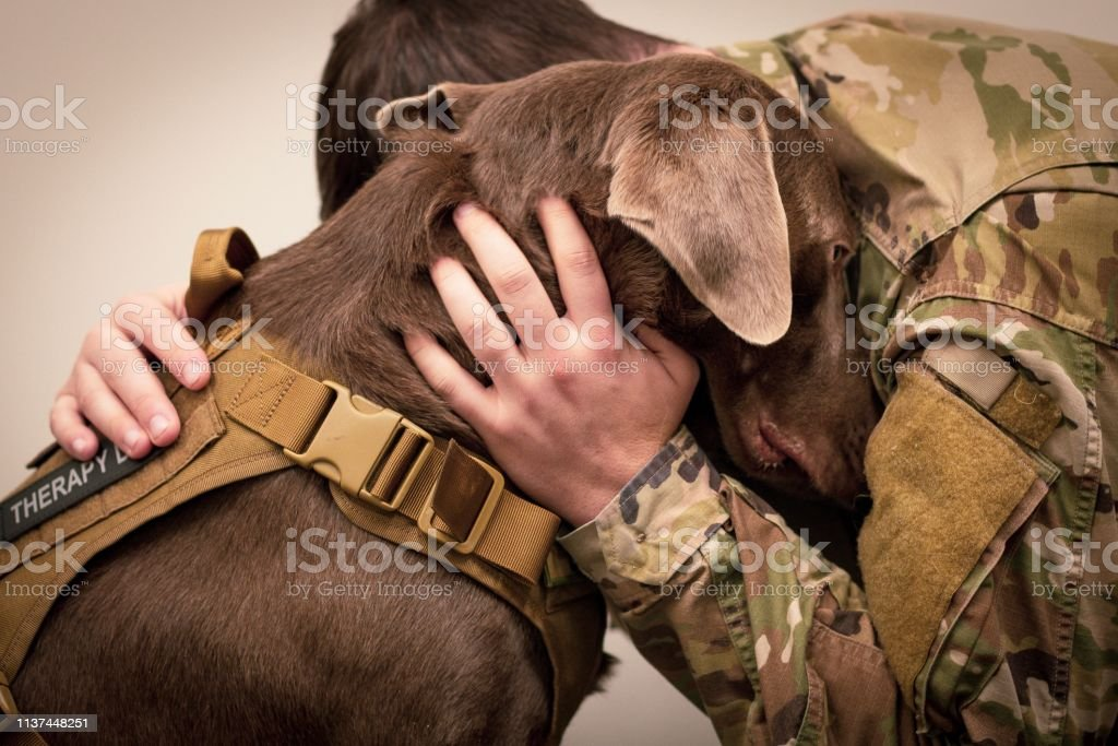 A friend loves at all times Soldier Hugs Dog Adult Stock Photo
