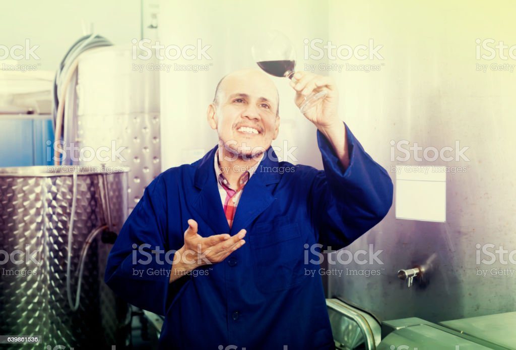 friendly mature man winery worker looking at glass stock photo