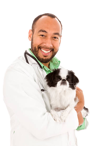 Friendly veterinarian holding a dog picture id166071198?b=1&k=6&m=166071198&s=612x612&w=0&h=xnk6bjub2c qzm gocv3ddv5rox guzz9tosan rbqo=