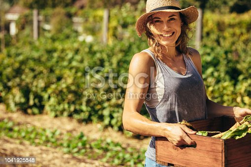 Friendly woman harvesting fresh vegetables from her farm. Beautiful female carrying carte full fresh harvest in the farm.
