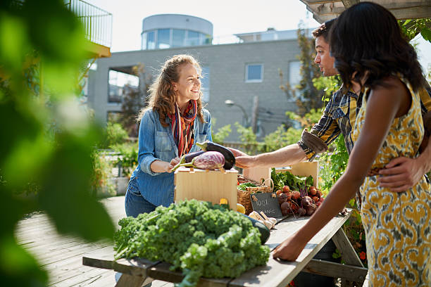 Friendly woman tending an organic vegetable stall at a farmer Female gardener selling organic crops and picking up a bountiful basket full of fresh produce farmer's market stock pictures, royalty-free photos & images