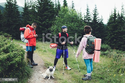 Happy young friends - men and women with backpacks and a small fluffy pug hiking in the forest in Carpathian Mountains, Ukraine during bright summer day - feeling freedom and happiness