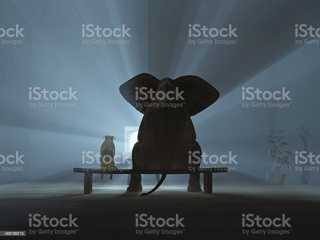 friends are watching TV stock photo