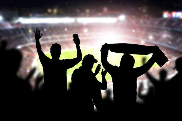 friends at football game in soccer stadium. crowd cheering and celebrating a goal in arena during match. - fan enthusiast stock photos and pictures